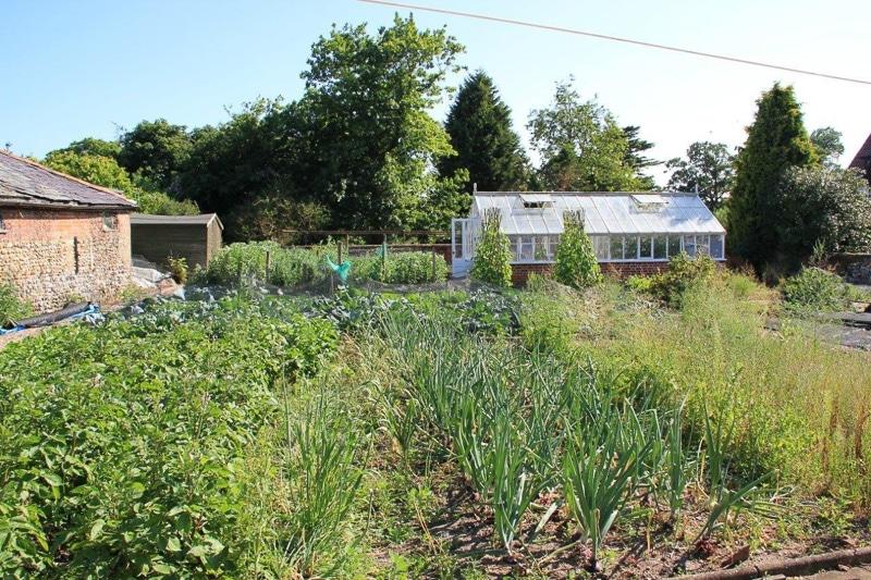<em>Many of your dinner vegetables are home grown.</em>